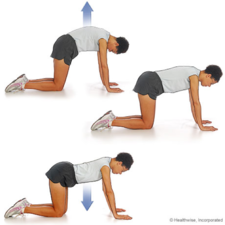 CORE WORK: EXERCISE SELECTION