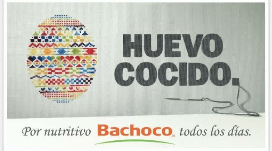 BACHOCO: REDEFINIENDO EL MARKETING DIRECTO