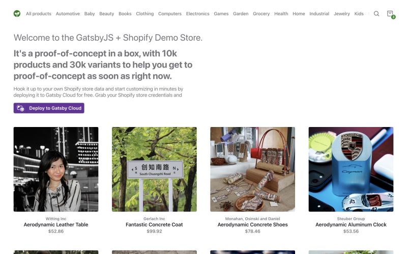 Build A Shopify Website