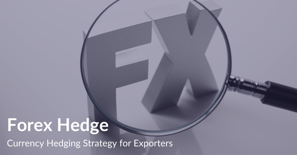 Forex Hedge | Currency Hedging Strategy for Exporters