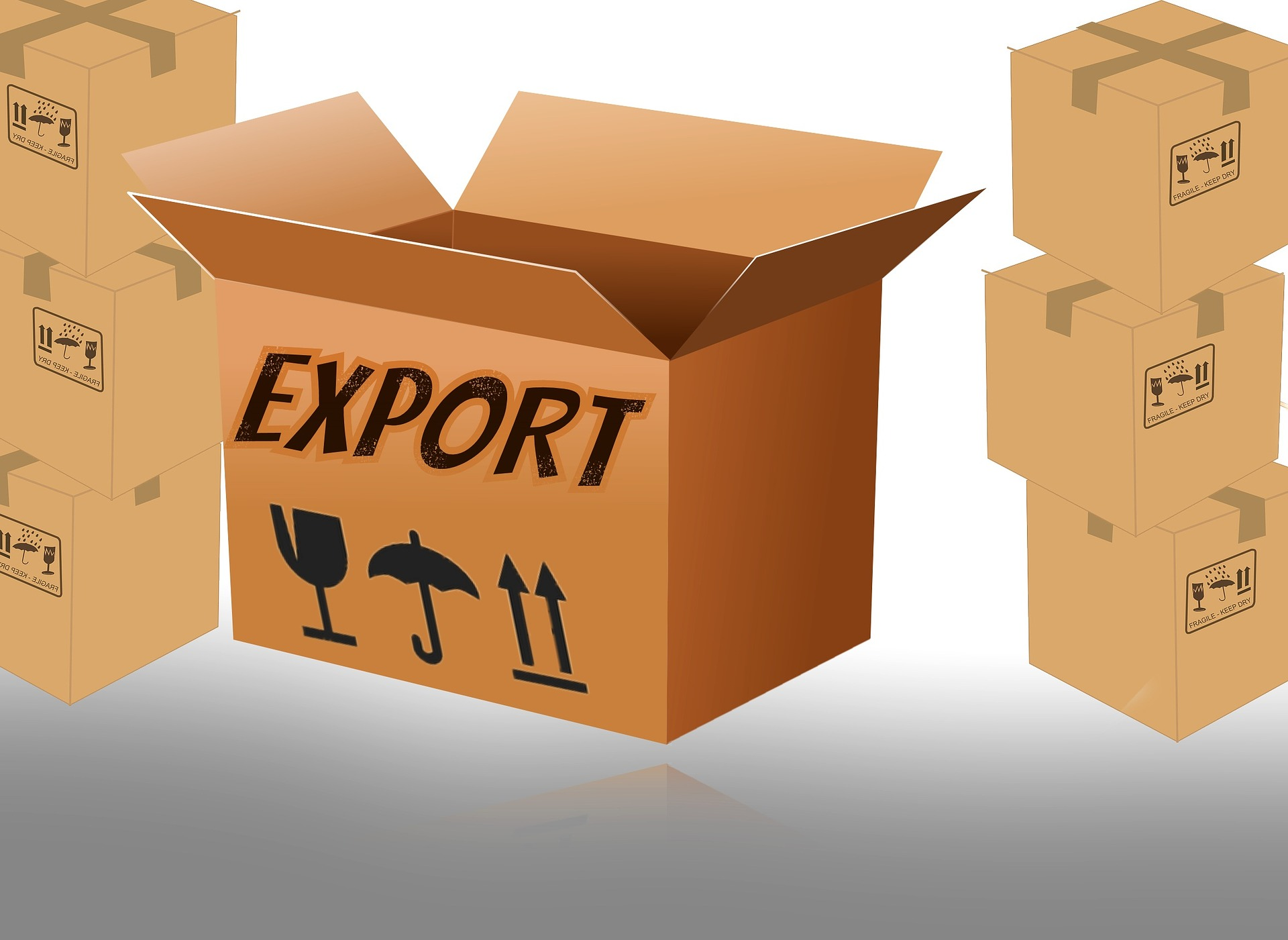 Got your first export order? Here's what you need to do next I Export Procedure