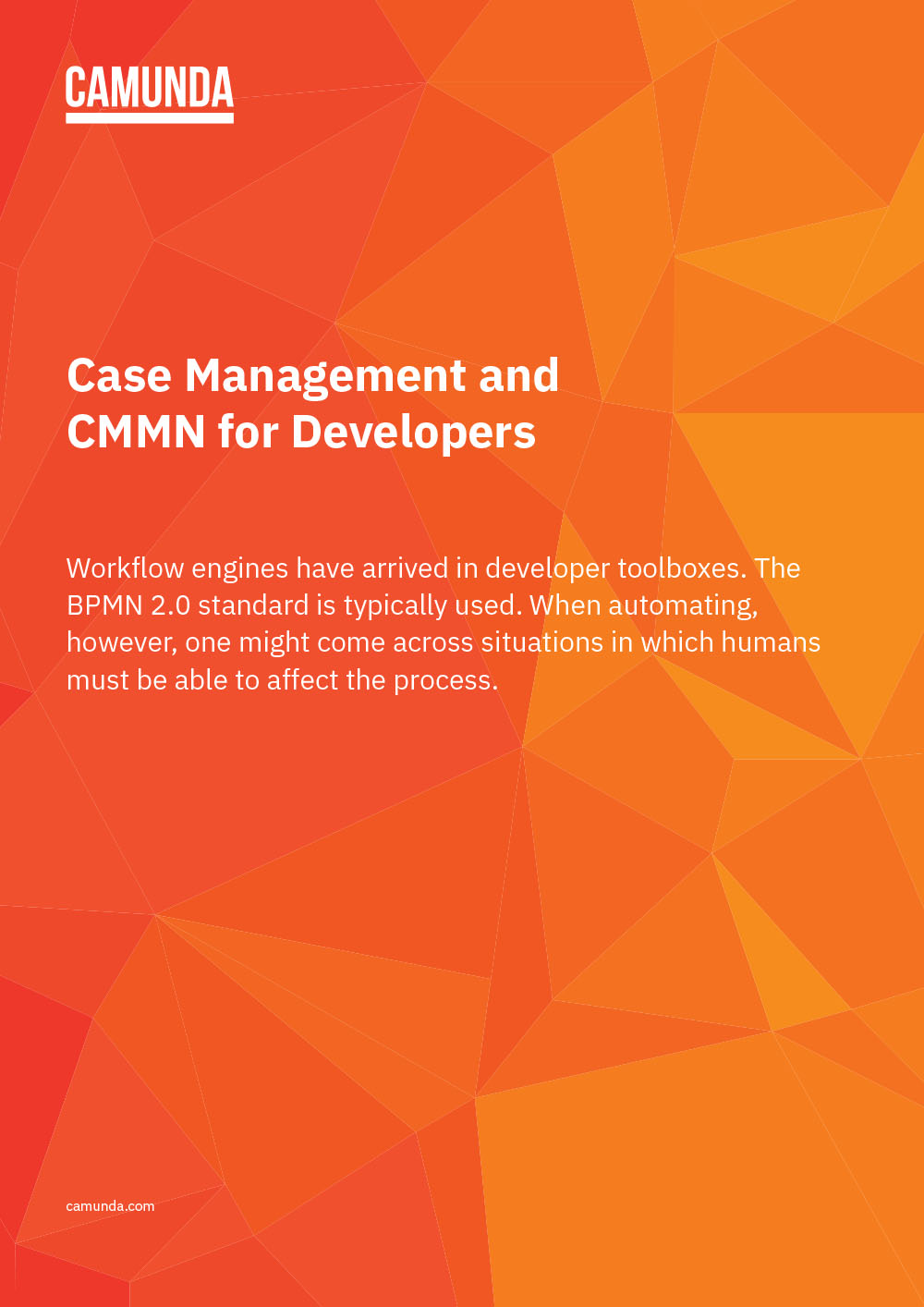 Case Management and CMMN for Developers