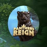Thumbnail image for Casino Game Panthers Reign by Quickspin