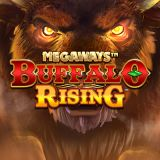 Thumbnail image for Casino Game Buffalo Rising Megaways by Blueprint