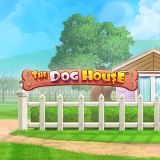 Thumbnail image for Casino Game The Dog House by Pragmatic Play