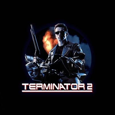 Terminator 2 by Microgaming • Casinolytics
