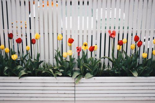 Gartengestaltung mit Holz: Holz eignet sich besonders zur Fertigung von Beeten und Blumenkübeln.