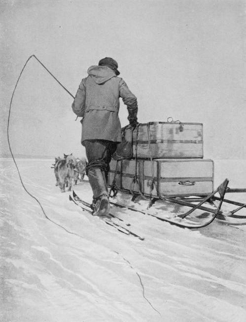 polar transport