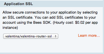 cloudbees console SSL application
