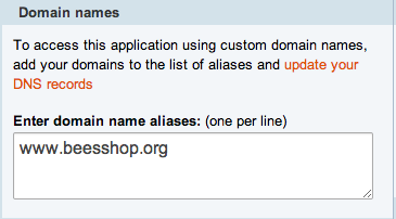 cloudbees console domain name alias