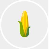 Vecka 24-ikon