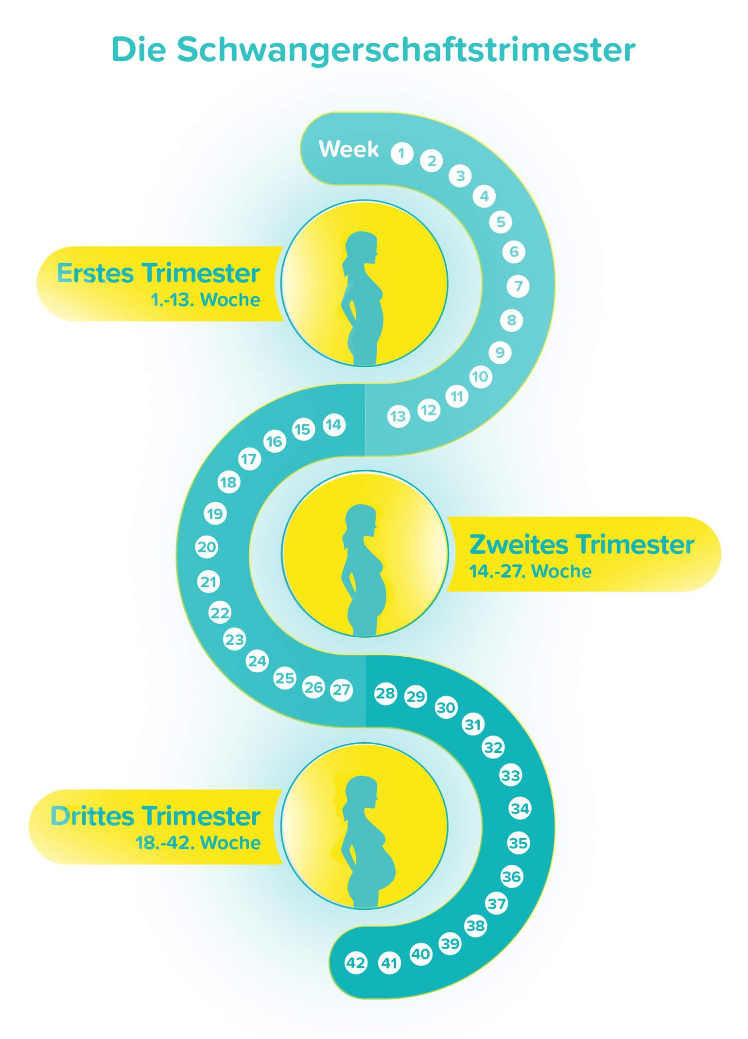 Anzeichen einnistung Embryotransfer Einnistung: