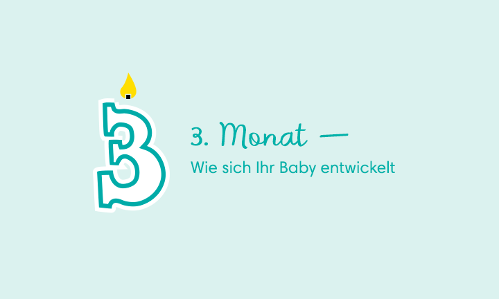 3-Month-Old