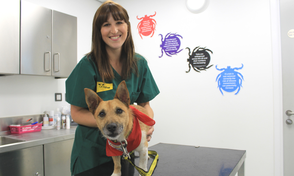 Dogs Trust. Smiling woman vet with a small dog wearing a red bandana