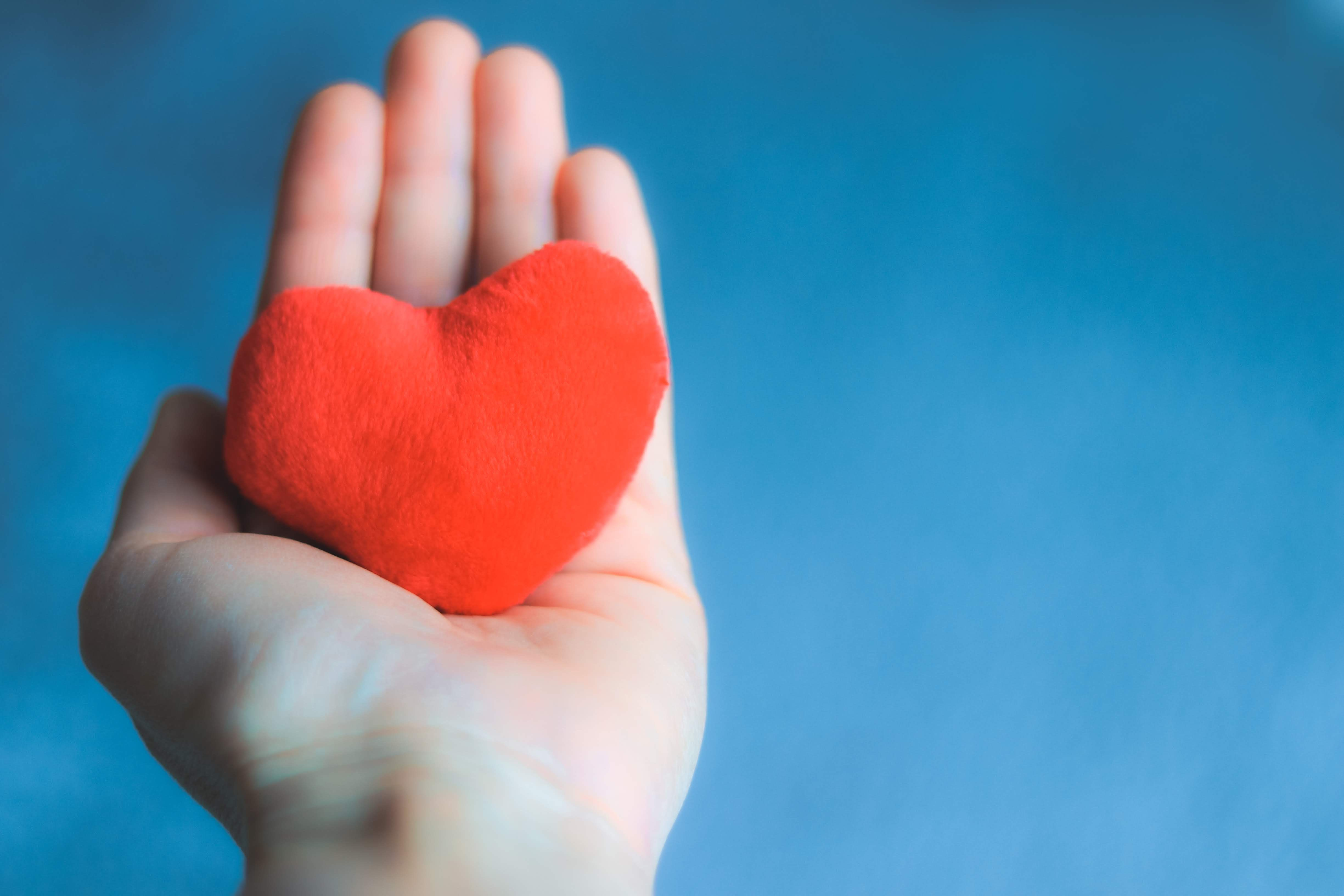 Adding a gift to a community foundation to your will