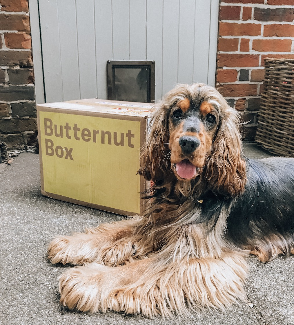 Butternut Box | Coping with irritable bowel syndrome
