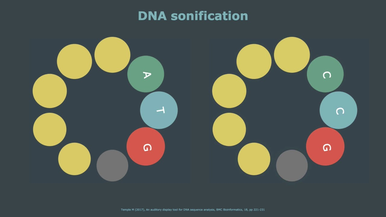 Mark Temple's depiction of DNA sonification.