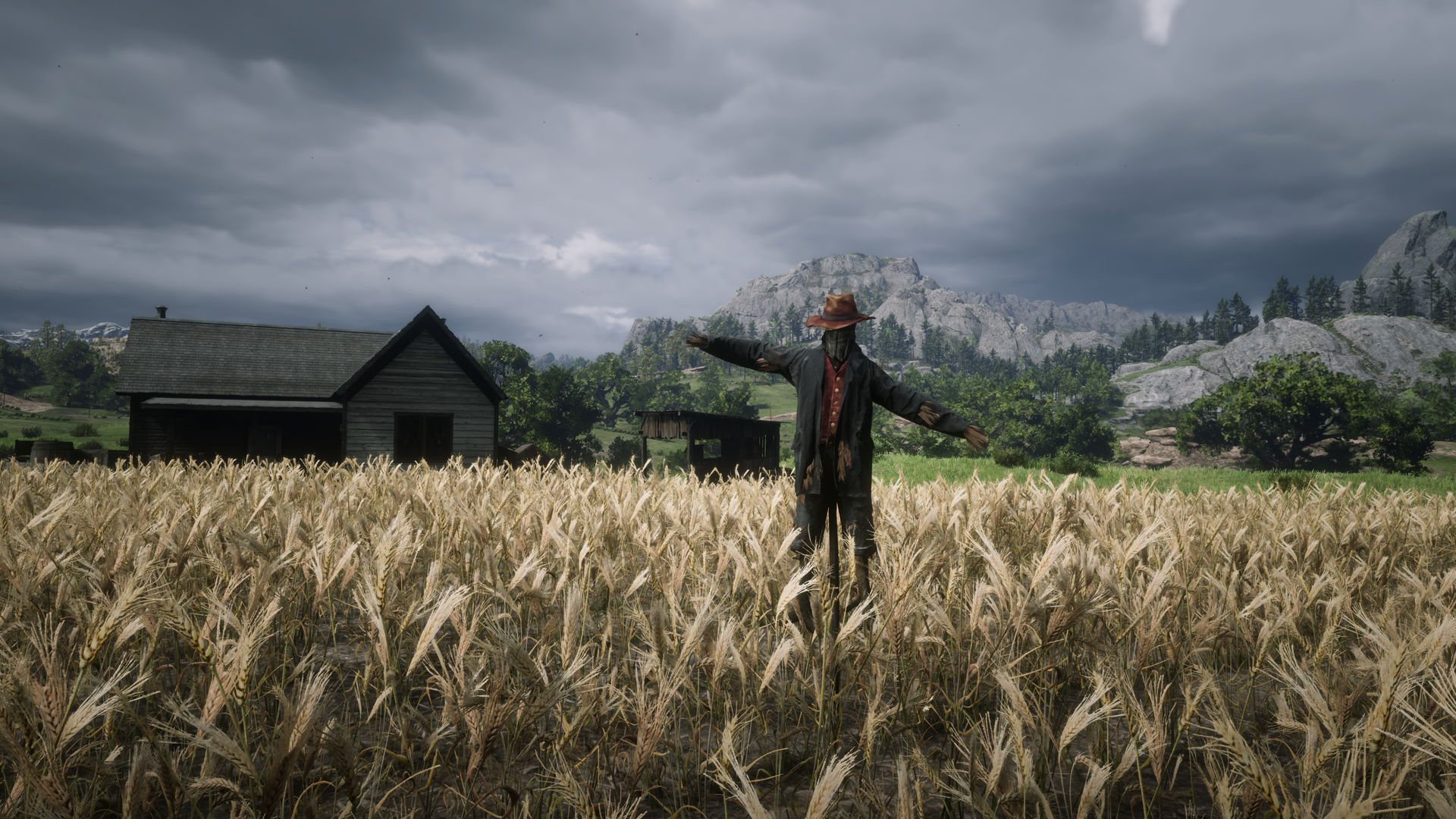 Scarecrow Hat Location - Found Hat - Red Dead Redemption 2