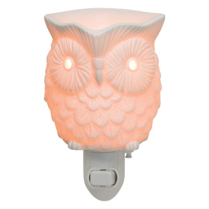 Scentsy Mini Warmers