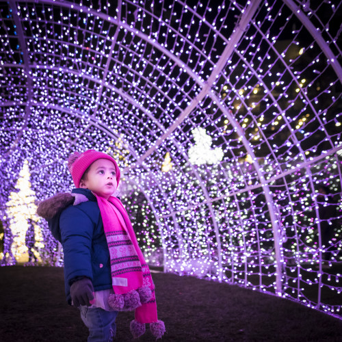 Enchant-Christmas-Boy-Purple-Light-Tunnel