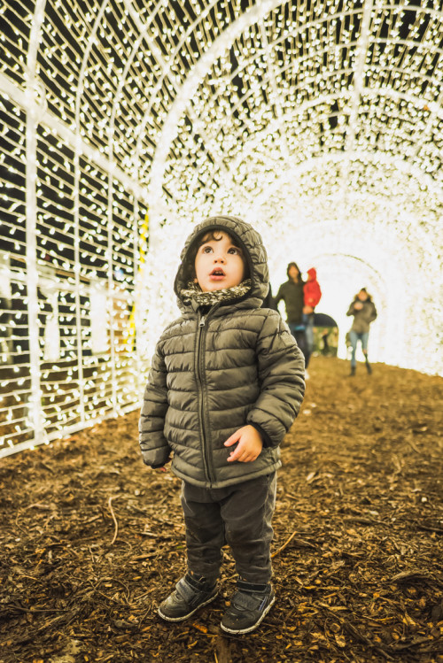 Enchant-Christmas-Light-Tunnel-Boy
