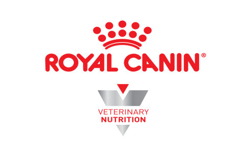 Croquettes Royal Canin Veterinary Diet pour chat