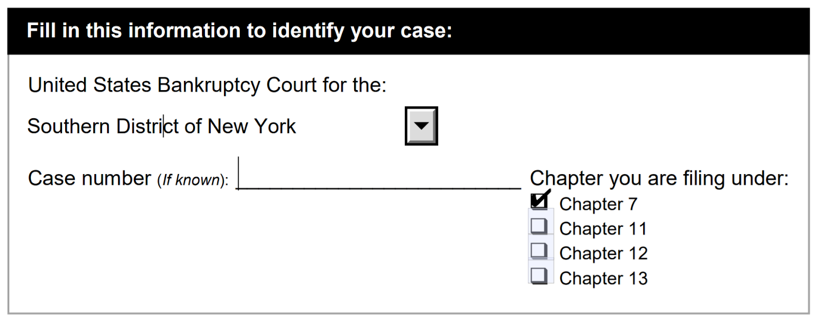 Figure 5. Filing District Information on Voluntary Petition