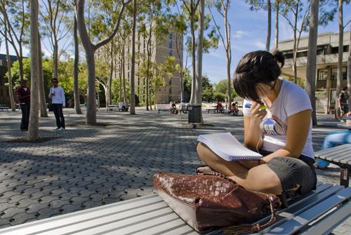 Looking For Arup Com Nope I M In The Right Place Sydney Macquarie University Central Courtyard Precinct Arup Is Developing Strategies To Enhance The Macquarie Campus Experience Using Contemporary Technology Our Work Is Focused On Two New