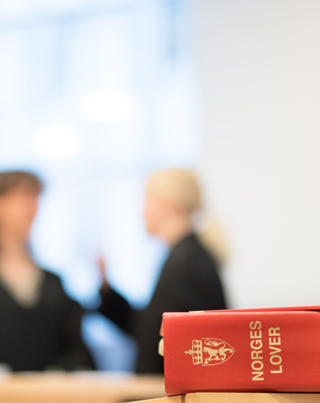 The book of Norwegian laws in the foreground, two women discussing in the background.