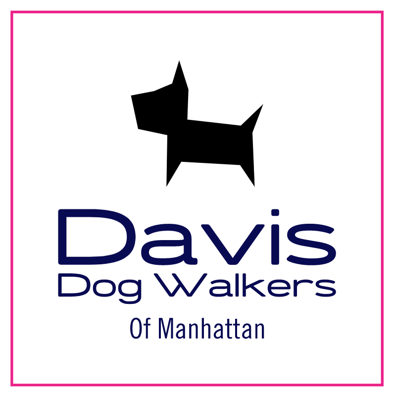 Davis-Dog-Walkers.png