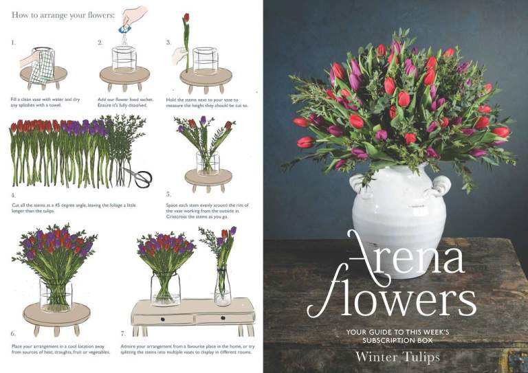 SUBSCRIPTION FLOWERS LEAFLET Winter Tulips Page 1 1024x.jpg?v=1608554100
