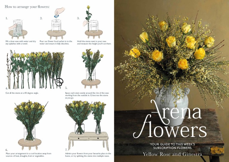 SUBSCRIPTION FLOWERS LEAFLET Yellow rose and ginestra Page 1