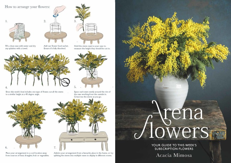 SUBSCRIPTION FLOWERS LEAFLET Yellow Acacia WK 3 Page 1
