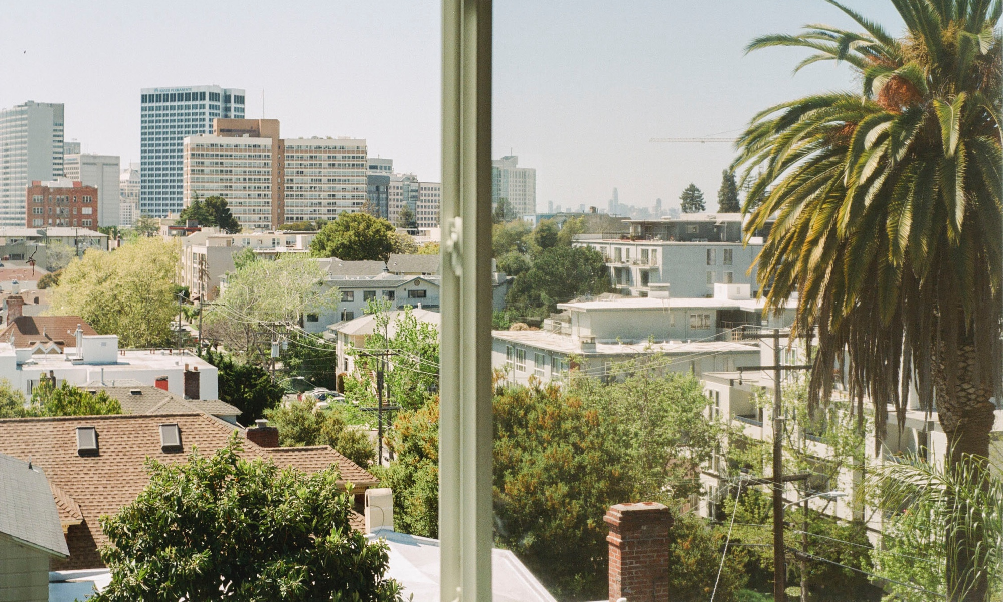 The view from Kameron's light-filled home.