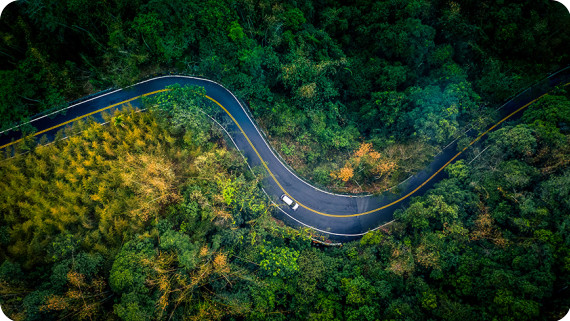 Ariel view of road through forest