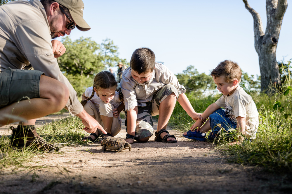 The Mini Game Rangers' Course offers young explorers the chance to learn new skills in nature's abundant classroom