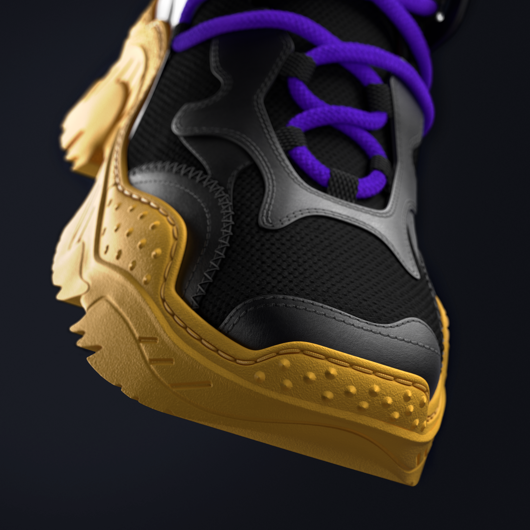 Sneaker's front view.
