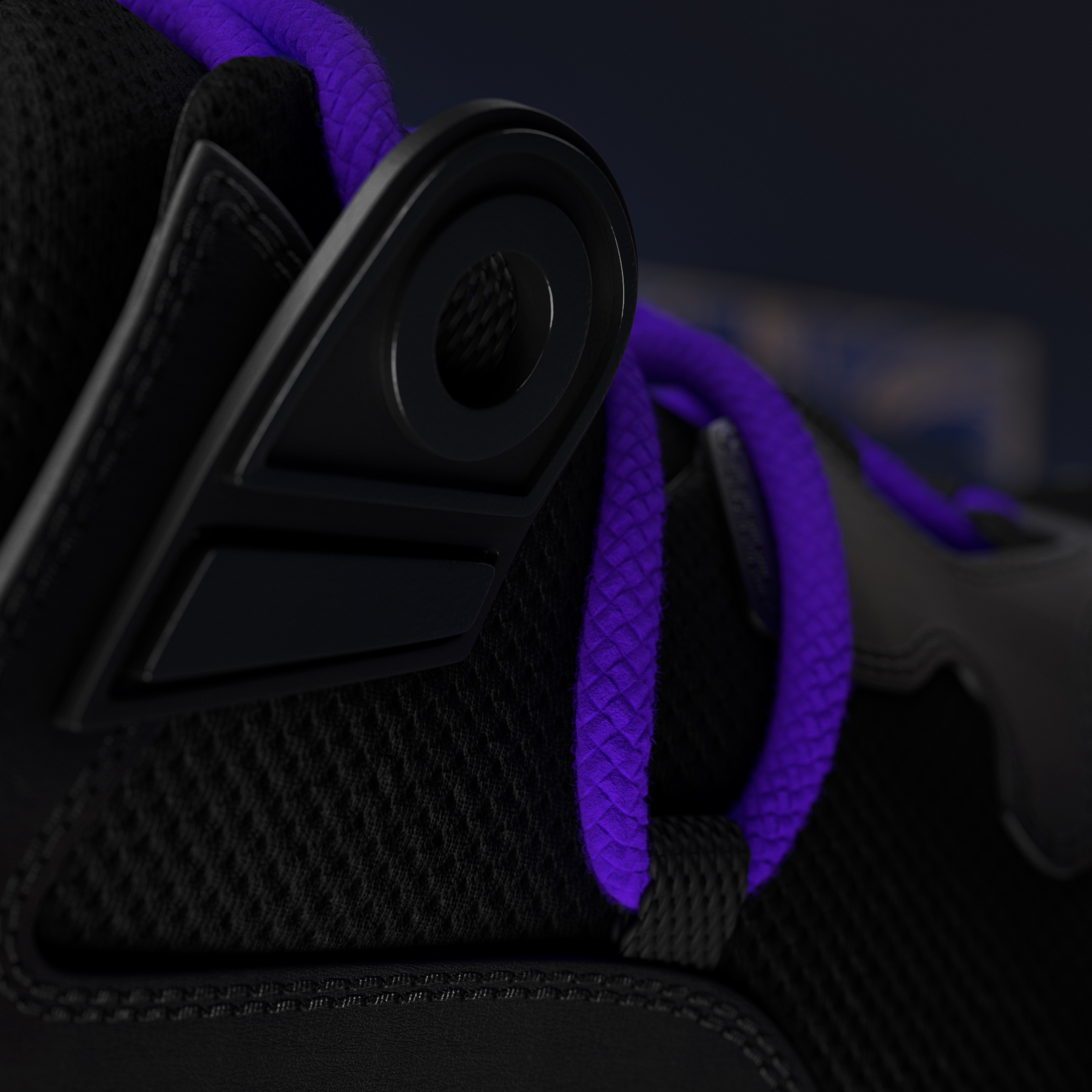 Sneaker's laces detail, close up side view.