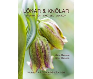 Lökar & knölar - Inspiration, skötsel, lexikon. Foto: Norstedts förlag.