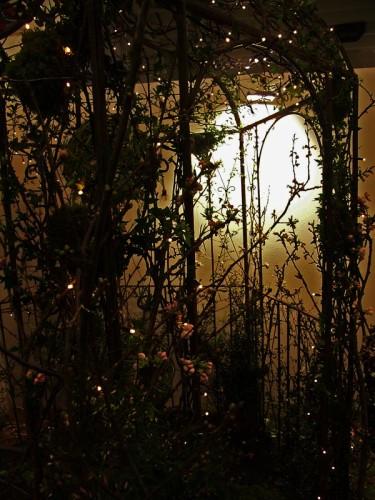 Fasadbelysning och belyst rosenportal.Foto: Sylvia Svensson