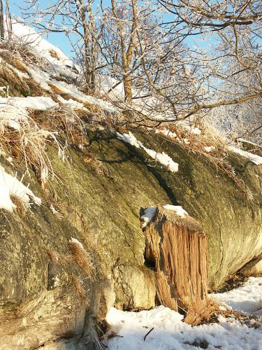 Februarisolen värmer i läplatser! Foto: Bernt Svensson