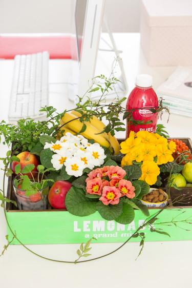 Blommor i starka färger lyfter humöret! Foto: Floradania
