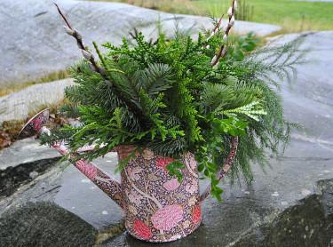 Vacker kanna med vintergrönt instucken i sandArrangemang + foto: Sylvia Svensson