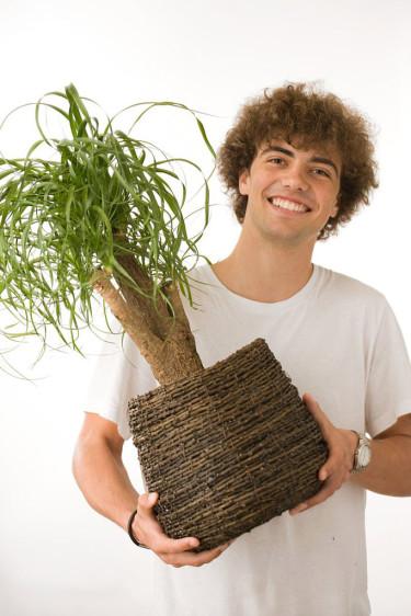 Perfekta växter till upptagna tonåringar.