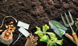 Trädgårdsredskap i jorden
