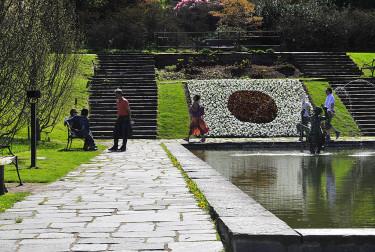 Även dammrabatten är i form av japansk flagga. Foto: Bernt Svensson
