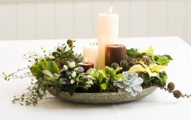 Adventsfat i ljusa färger med juliga miniväxter.  Foto: Floradania