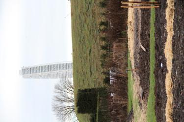 Granne med Slottsträdgården ligger en vallgrav som främjar det viktiga och rika insektslivet. Turning Torso i bakgrunden.