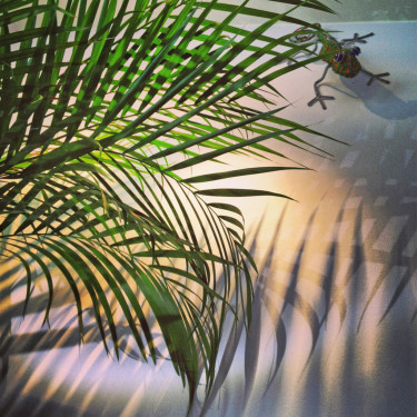 Skapa bladskugga, lägg dig därunder och föreställ dig att du ligger i hängmattan under ett solbelyst träd!
