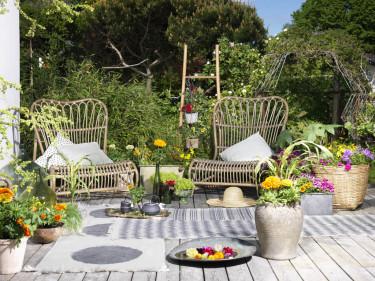 Tropikerna - på terrassen. Foto: Blomsterfrämjandet/Peter Carlsson